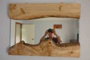 Carved frame with insects