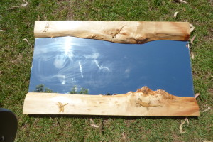 Carved mirror frame with lizards and dragon flies